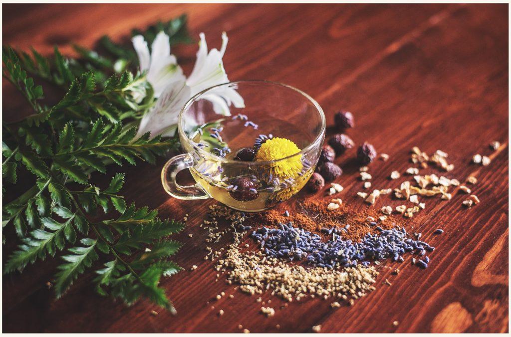 波蘭美食|波蘭花草茶
